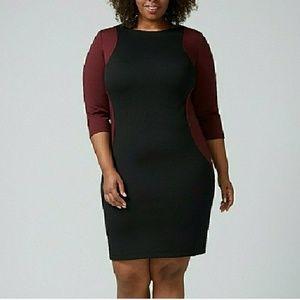 NEW Lane Bryant colorblock bodycon dress